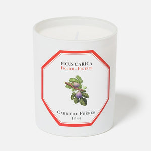 Carriere Freres Fig Candle