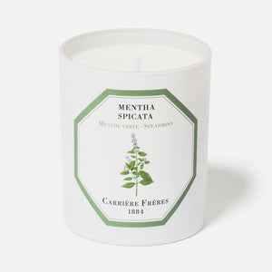 Carriere Freres Spearmint Candle