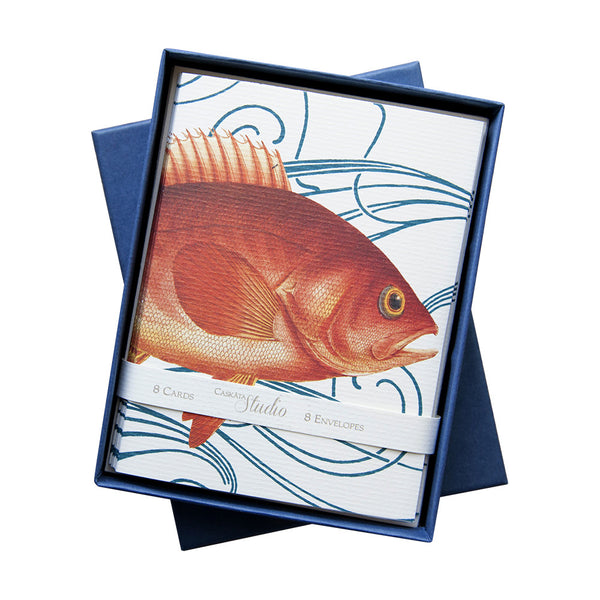 Eight Card Box - Goldfish
