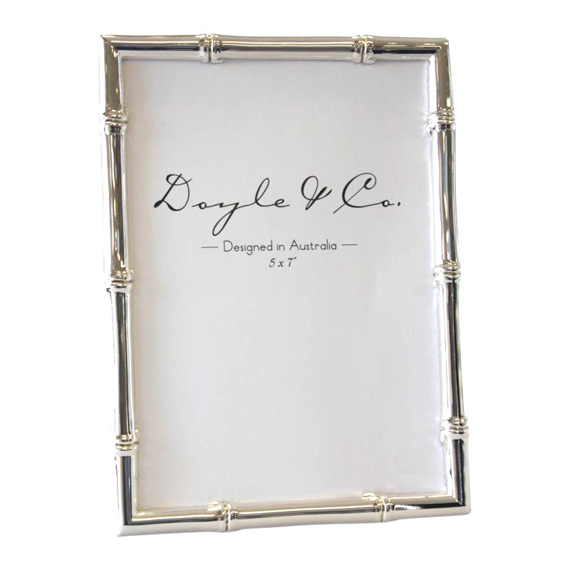 Silver Plated Bamboo Frame