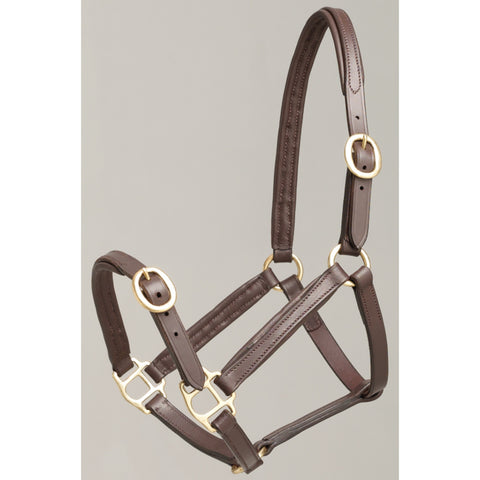 Aintree Leather Foal Halter