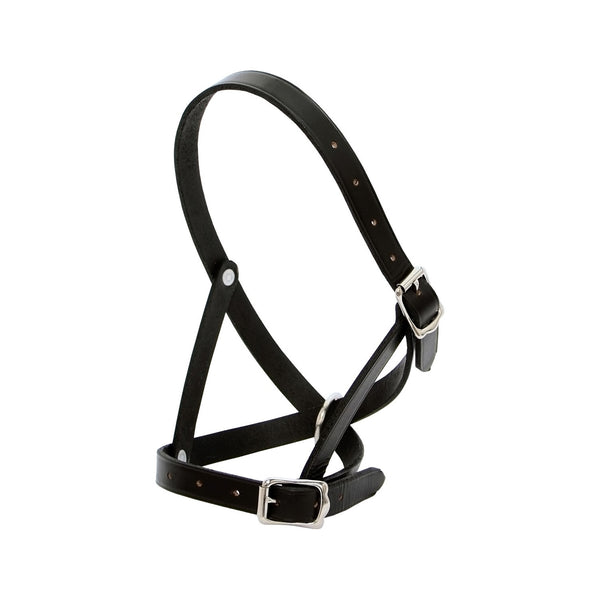 Leather Calf Halter