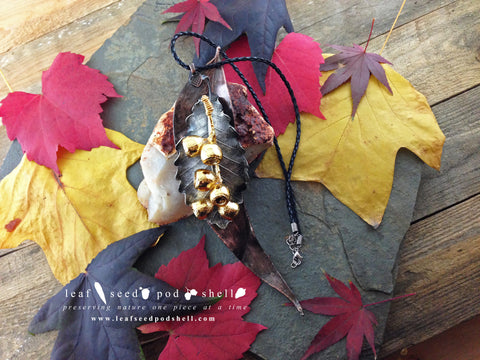 Gum Leaf Statement Piece - Various Finishes - Cat No 103 - Leaf Seed Pod Shell - 1