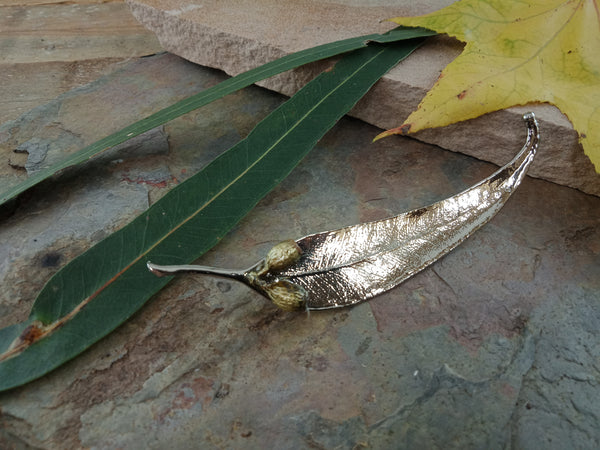 Gum Leaf and Gum Nut Brooch - Bright Nickel - Cat No 1170