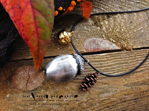 Acorn - Antique Silver - Cat No 143 - Leaf Seed Pod Shell - 1