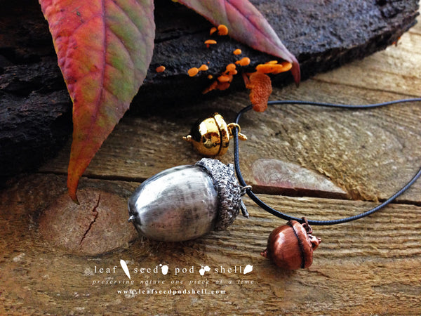Acorn - Antique Silver - Cat No 145 - Leaf Seed Pod Shell - 1