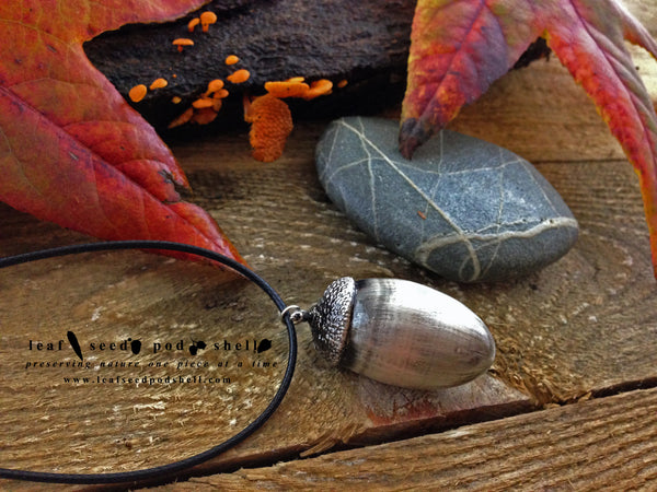 Acorn - Antique Silver - Cat No 151 - Leaf Seed Pod Shell - 1