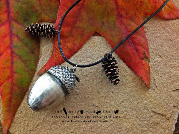 Acorn - Antique Silver - Cat No 161 - Leaf Seed Pod Shell - 1