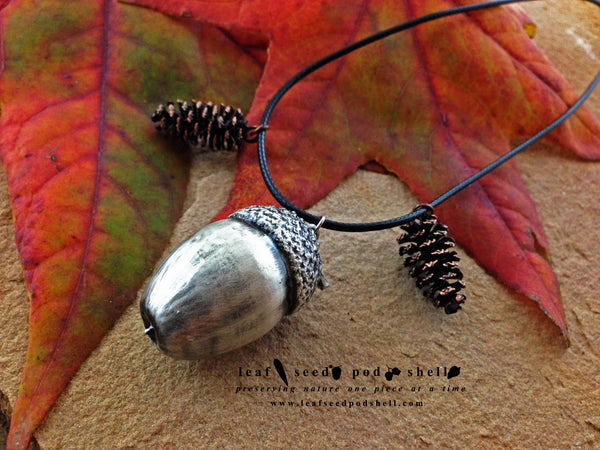 Acorn - Antique Silver - Cat No 161 - Leaf Seed Pod Shell - 2