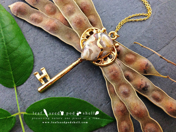 Crazy Lace Agate Key Pendant - Gold - Cat No 292 - Leaf Seed Pod Shell - 1