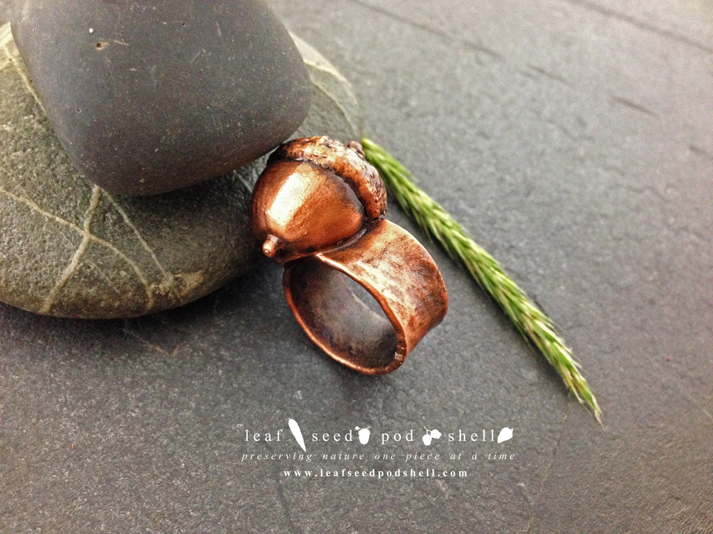 Acorn Ring - Antique Copper - Cat No 434 - Leaf Seed Pod Shell - 1