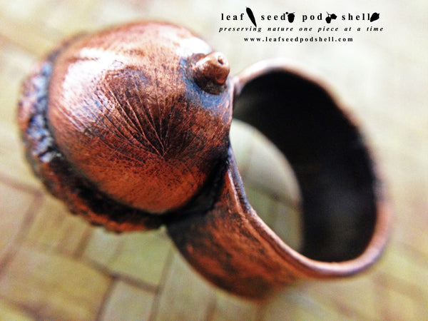 Acorn Ring - Antique Copper - Cat No 434 - Leaf Seed Pod Shell - 3