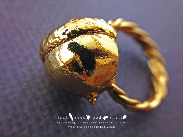 Acorn Ring - Gold - Cat No 487 - Leaf Seed Pod Shell - 1