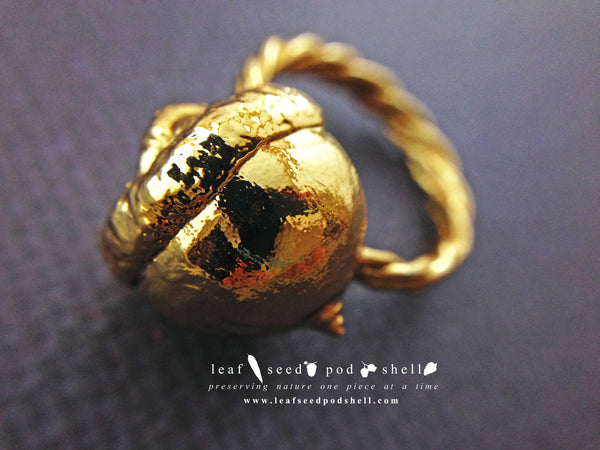 Acorn Ring - Gold - Cat No 487 - Leaf Seed Pod Shell - 2