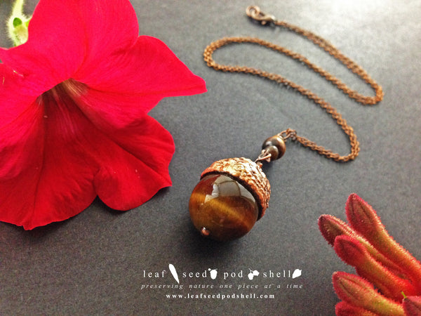 Tigers Eye Acorn - Antique Copper - Cat No 496 - Leaf Seed Pod Shell - 1