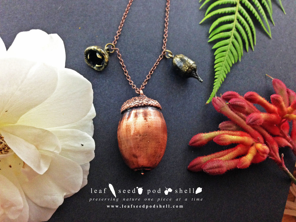 Acorn - Antique Copper - Cat No 499 - Leaf Seed Pod Shell - 1