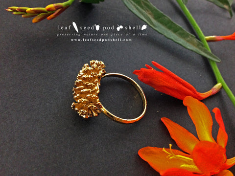 Pine Cone Ring - Gold - Cat No 535 - Leaf Seed Pod Shell - 1