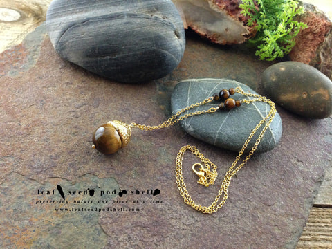 Tigers Eye Acorn - Gold - Cat No 70 - Leaf Seed Pod Shell - 1