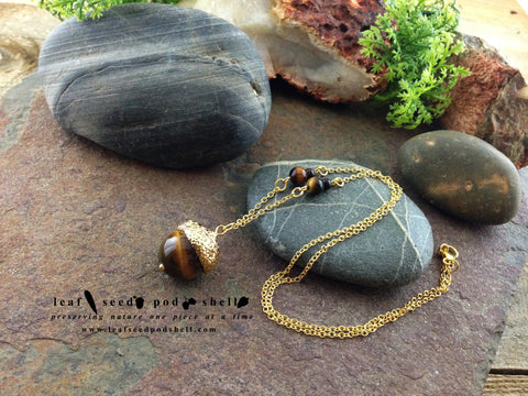 Tigers Eye Acorn - Gold - Cat No 71 - Leaf Seed Pod Shell - 1