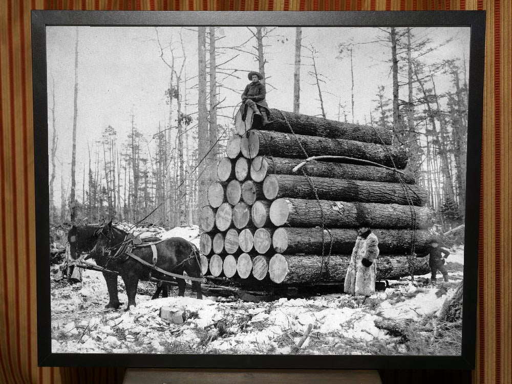 A Load of Logs