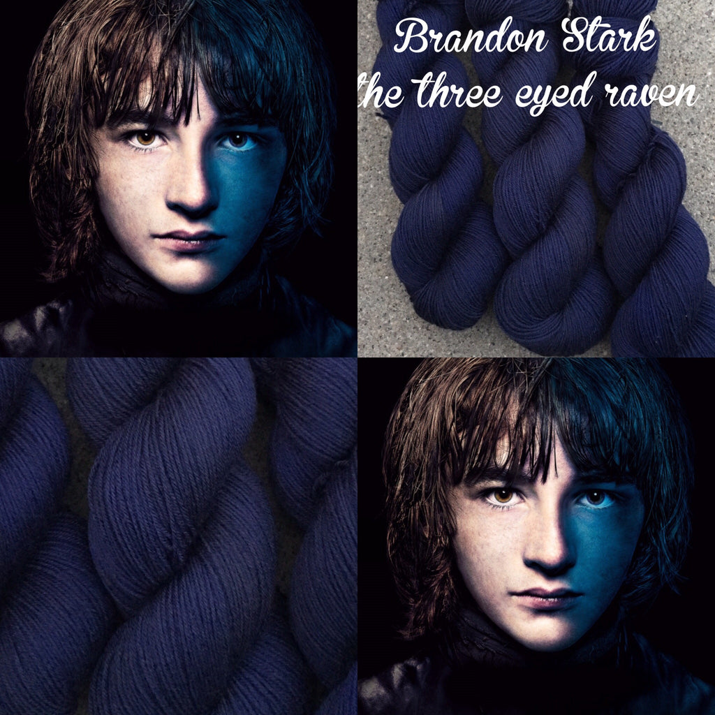 Brandon Stark. The three eyed raven