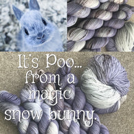 It's Poo...from a magic snow bunny