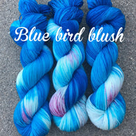 Blue Bird Blush