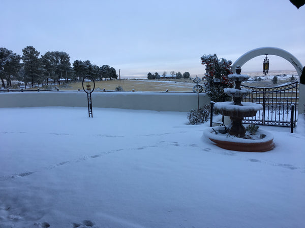 Snow in Sonoita!