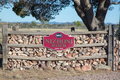 Rock fence entrance to the Nizhoni Ranch Gallery