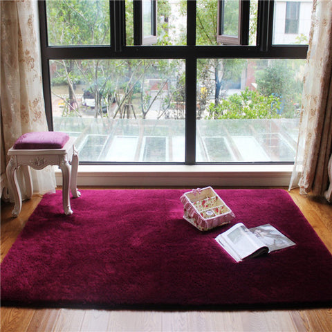 Carpets Floor Rug Area Rug 80x120cm