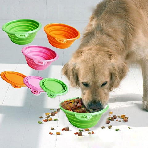 Collapsible foldable  travel portable puppy doogie food container feeder dish