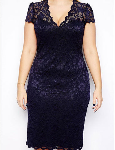 $9.75 Big Size Sexy Embroidery Floral Dress L to 3XL