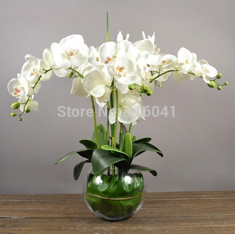 Orchids With Leaves Real Touch Flower Table Flower Decorative