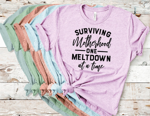 TR Surviving Motherhood One Meltdown at a time (design only)