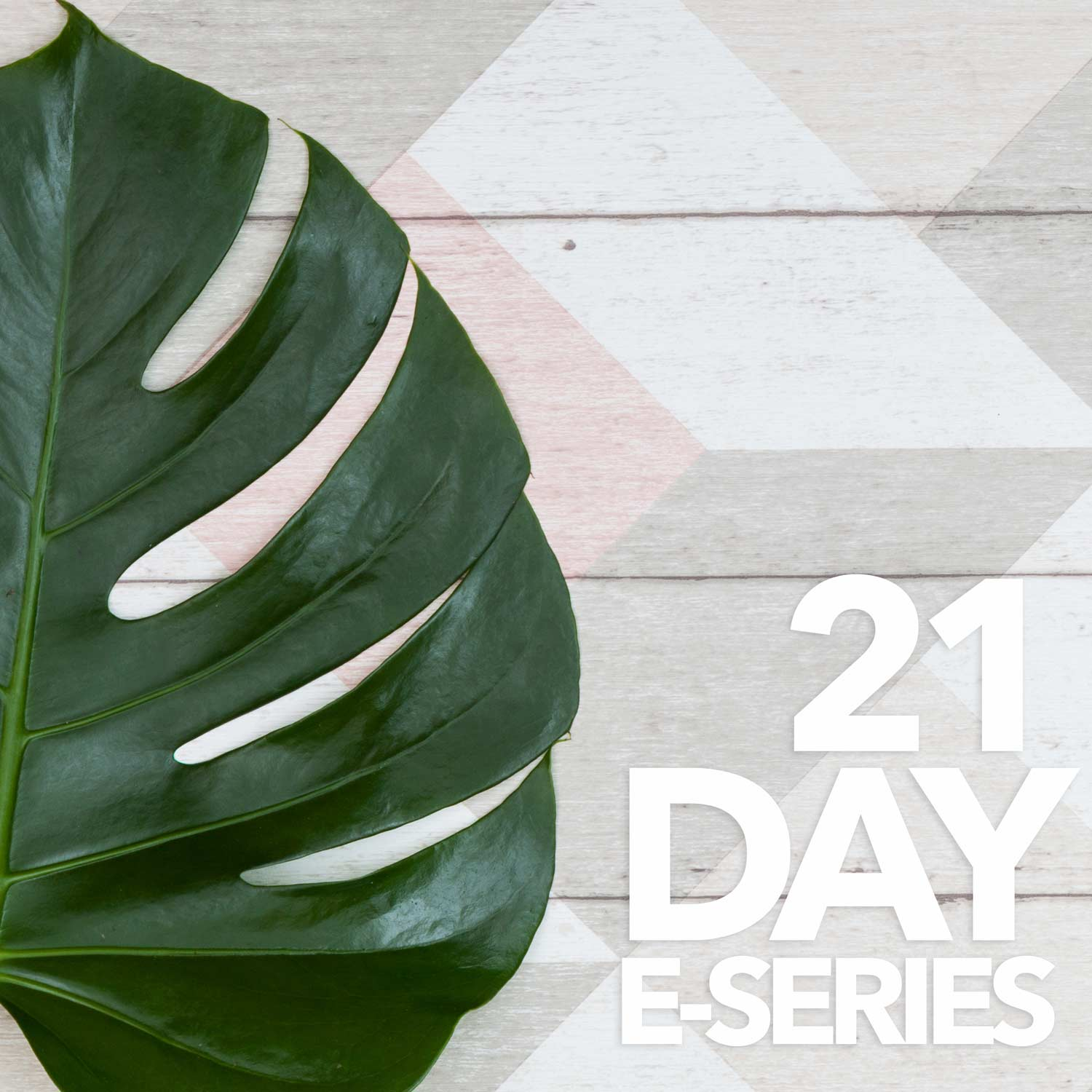 The 21 Day Keto Kickstart Program - E-Series & Digital Downloads