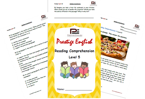 Reading Comprehension Book - Level 5 - Download