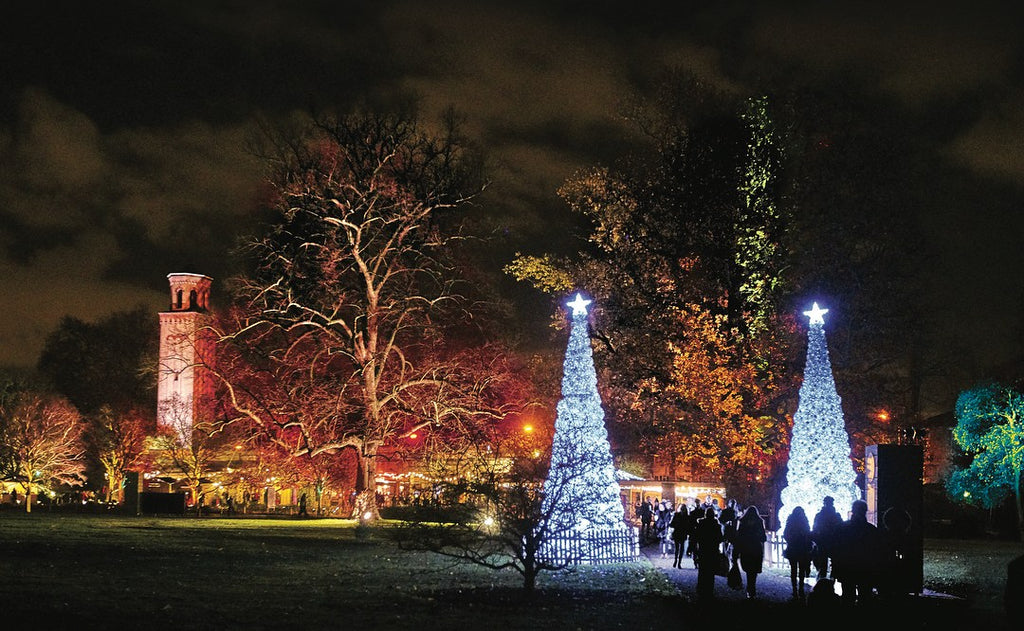 Top Christmas Lights to Visit in 2017