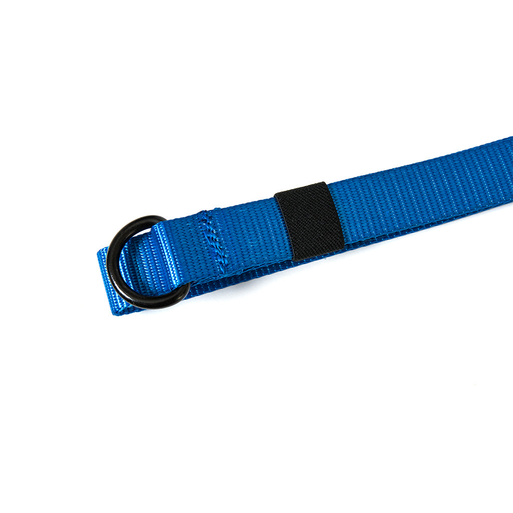 The 50 Belt - Cobalt