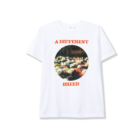Different Breed SS Tee - White