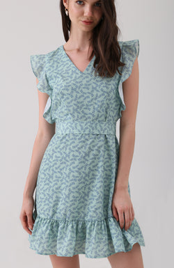 Delia Printed Ruffle Dress