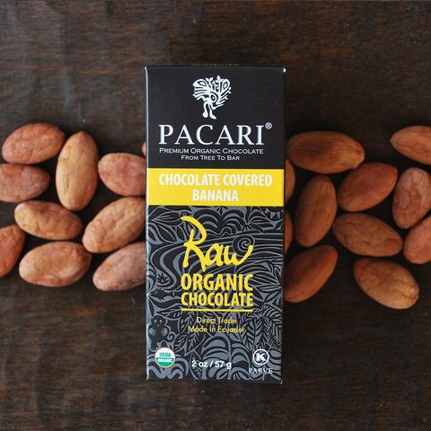 Pacari Dark Chocolate Covered Bananas