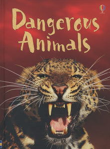 Beginners:Dangerous Animals