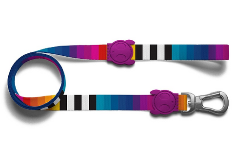 ZEE.DOG Prisma Leash - My Pooch and Co.