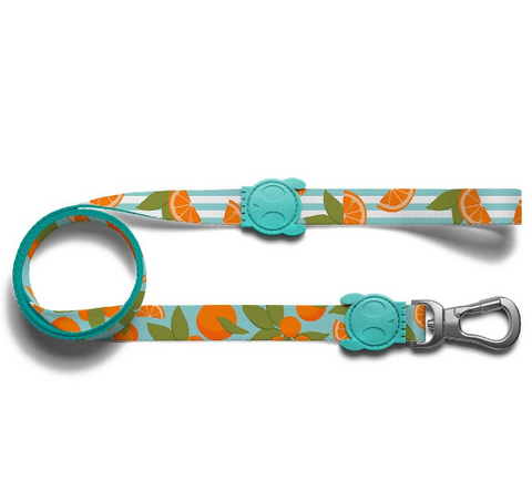 ZEE.DOG Florida Leash - My Pooch and Co.