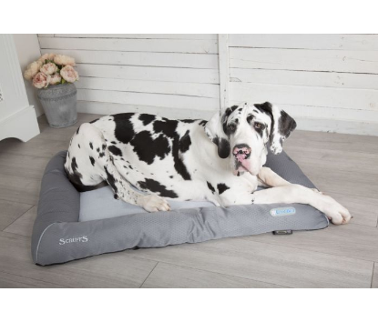 SCRUFFS Cooling Dog Bed - My Pooch and Co.