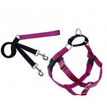 Freedom No-Pull Harness and Leash Raspberry - My Pooch and Co.
