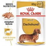 ROYAL CANIN Adult Dachshund (12x85g) - My Pooch and Co.