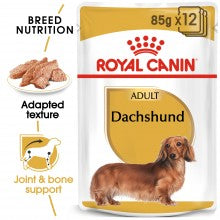 ROYAL CANIN Adult Dachshund (12x85g) - Exp. 08/2020 - My Pooch and Co.
