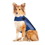 THUNDERSHIRT Polo Top Blue - My Pooch and Co.