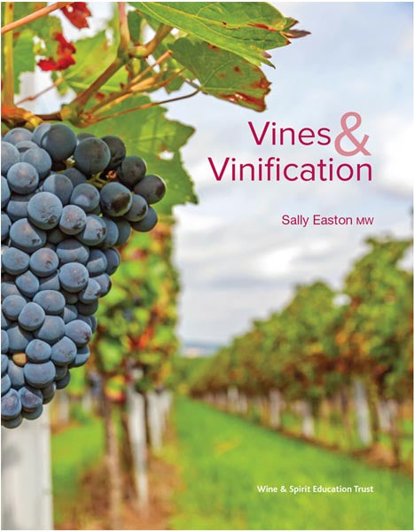 Vines and Vinification